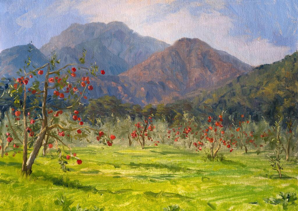 mountain apples field